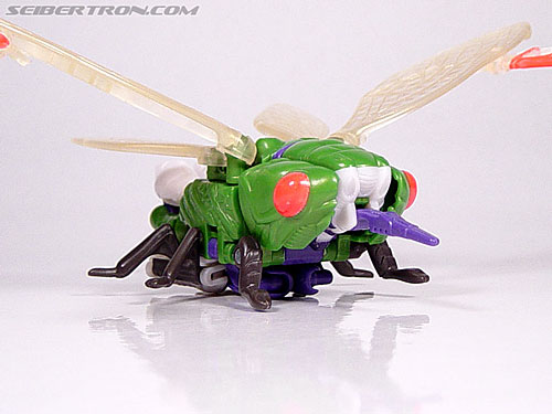 Transformers Beast Wars Cicadacon (D.J.) (Image #16 of 44)