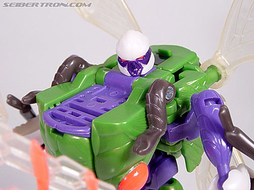 Transformers Beast Wars Cicadacon (D.J.) (Image #32 of 44)
