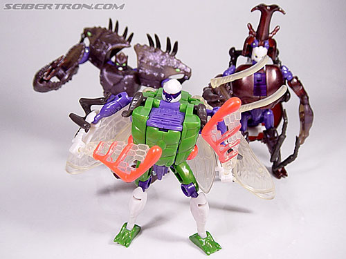 Transformers Beast Wars Cicadacon (D.J.) (Image #41 of 44)