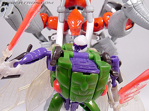 Transformers Beast Wars Cicadacon (D.J.) (Image #44 of 44)