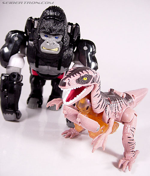 Transformers Beast Wars Dinobot (Image #21 of 121)