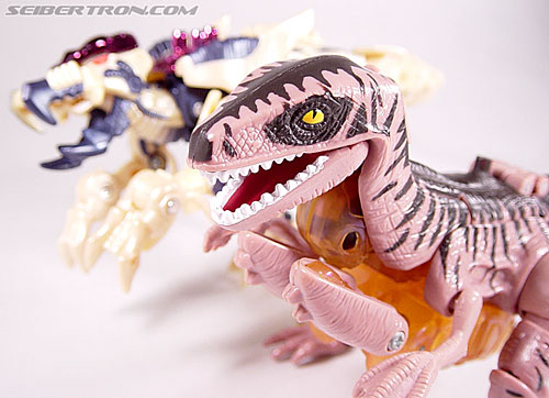 Transformers Beast Wars Dinobot (Image #36 of 121)