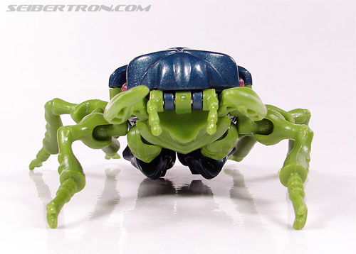 Transformers Beast Wars Insecticon (Image #15 of 76)