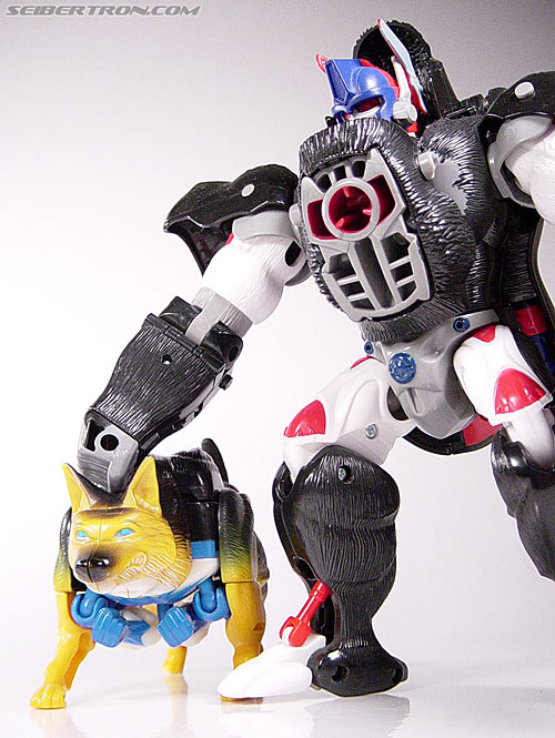 Transformers Beast Wars K-9 (Max-B) (Image #21 of 62)