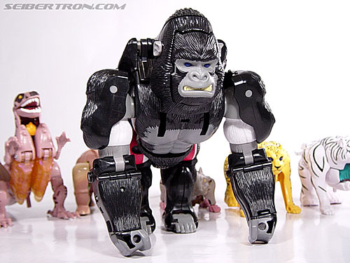 Transformers Beast Wars Optimus Primal (Convoy) (Image #4 of 99)