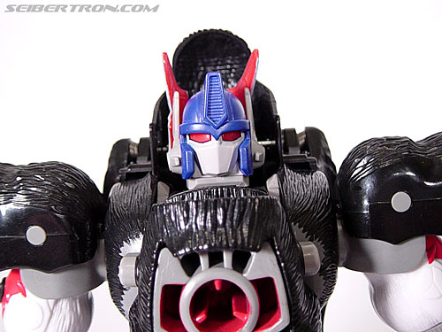Transformers Beast Wars Optimus Primal (Convoy) (Image #79 of 99)