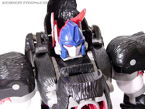 Transformers Beast Wars Optimus Primal (Convoy) (Image #82 of 99)