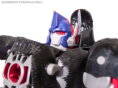 Transformers Beast Wars Optimus Primal (Convoy) (Image #83 of 99)