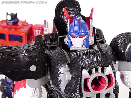 Transformers Beast Wars Optimus Primal (Convoy) (Image #85 of 99)