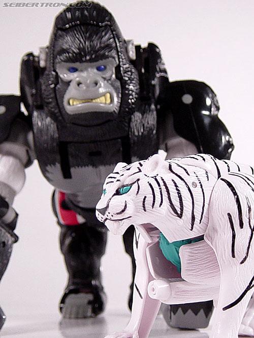 Transformers Beast Wars Tigatron (Image #49 of 107)