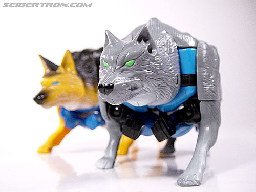 Transformers Beast Wars Wolfang (Howlinger) (Image #1 of 74)