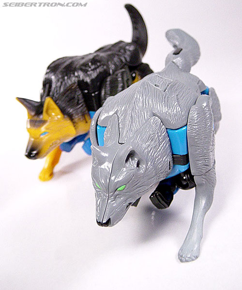 Transformers Beast Wars Wolfang (Howlinger) (Image #2 of 74)
