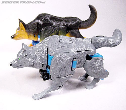 Transformers Beast Wars Wolfang (Howlinger) (Image #3 of 74)