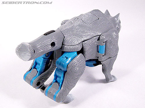Transformers Beast Wars Wolfang (Howlinger) (Image #11 of 74)