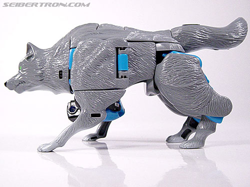 Transformers Beast Wars Wolfang (Howlinger) (Image #15 of 74)