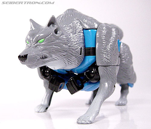 Transformers Beast Wars Wolfang (Howlinger) (Image #17 of 74)