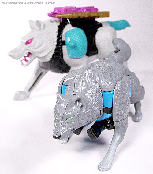 Transformers Beast Wars Wolfang (Howlinger) (Image #21 of 74)