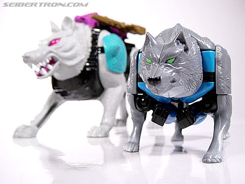 Transformers Beast Wars Wolfang (Howlinger) (Image #22 of 74)
