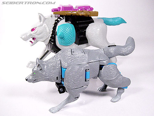 Transformers Beast Wars Wolfang (Howlinger) (Image #23 of 74)