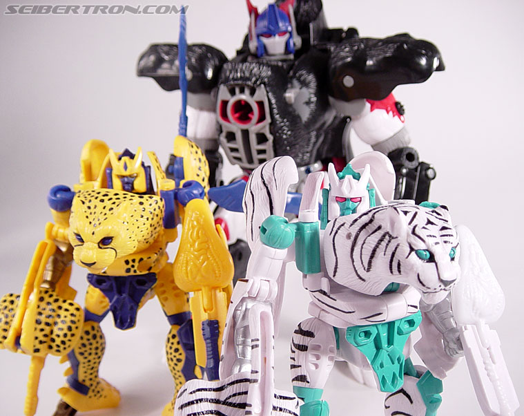 Transformers Beast Wars Tigatron (Image #103 of 107)