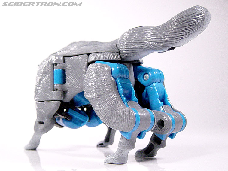 Transformers Beast Wars Wolfang (Howlinger) (Image #14 of 74)