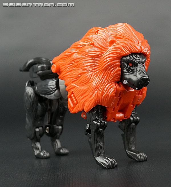 Transformers News: New Galleries: Beast Wars Special Lio Junior Black and White versions plus Metals Rattrap Special