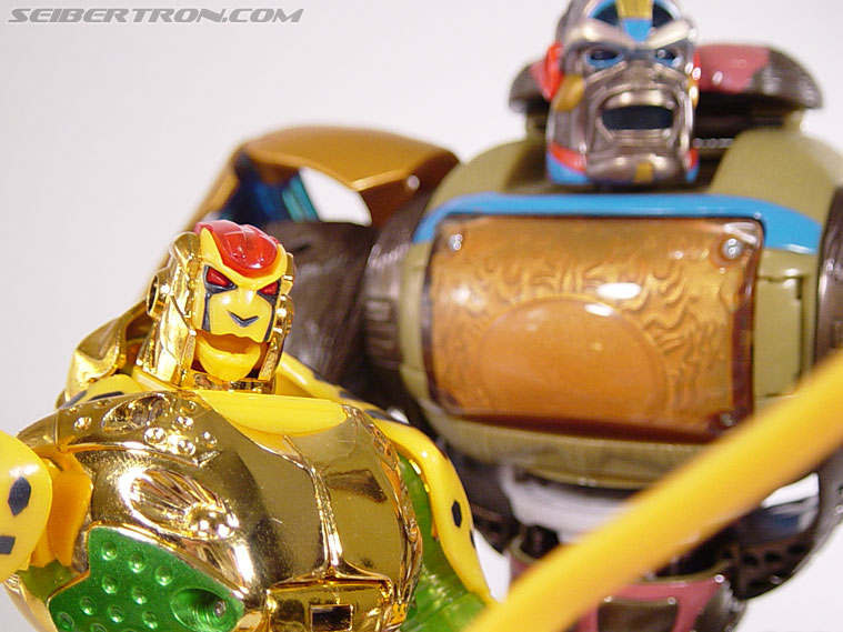 Transformers Beast Machines Cheetor (Cheetas) (Image #105 of 107)