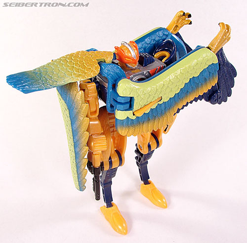 Transformers Beast Machines Airraptor (Image #33 of 69)