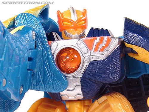 Transformers Beast Machines Airraptor (Image #54 of 69)