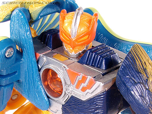Transformers Beast Machines Airraptor (Image #60 of 69)