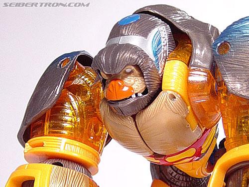 Transformers Beast Machines Blast Punch Optimus Primal (Beast Convoy) (Image #5 of 53)