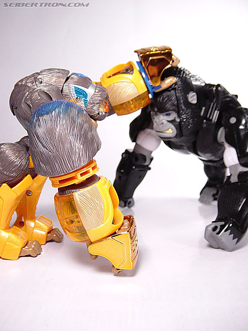 Transformers Beast Machines Blast Punch Optimus Primal (Beast Convoy) (Image #13 of 53)