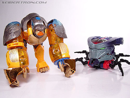 Transformers Beast Machines Blast Punch Optimus Primal (Beast Convoy) (Image #15 of 53)
