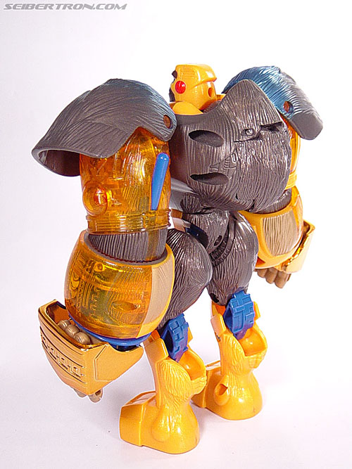 Transformers Beast Machines Blast Punch Optimus Primal (Beast Convoy) (Image #38 of 53)