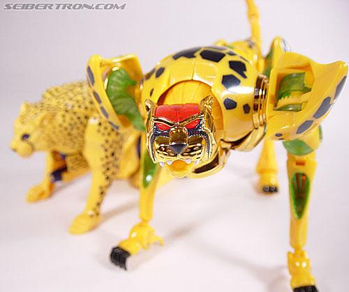Transformers Beast Machines Cheetor (Cheetas) (Image #50 of 107)