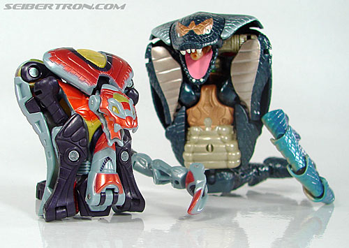 Transformers Beast Machines Night Viper (Image #33 of 135)