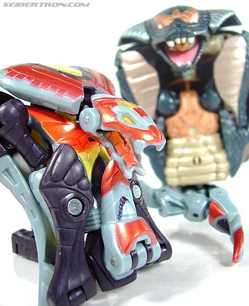 Transformers Beast Machines Night Viper (Image #34 of 135)