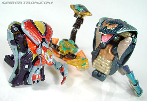 Transformers Beast Machines Night Viper (Image #35 of 135)