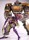 Beast Machines Black Widow (Blackarachnia)  - Image #43 of 51