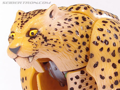 Transformers Beast Wars Telemocha Series Cheetor (Cheetas)  (Reissue) (Image #36 of 118)