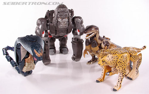 Transformers Beast Wars Telemocha Series Cheetor (Cheetas)  (Reissue) (Image #46 of 118)