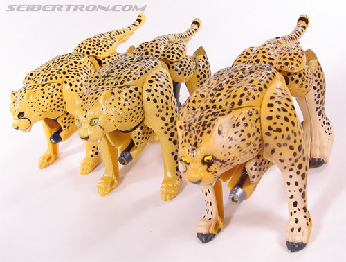Transformers Beast Wars Telemocha Series Cheetor (Cheetas)  (Reissue) (Image #49 of 118)