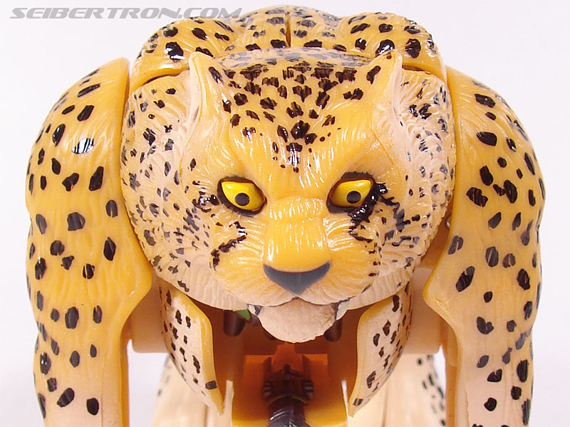 Transformers Beast Wars Telemocha Series Cheetor (Cheetas)  (Reissue) (Image #25 of 118)