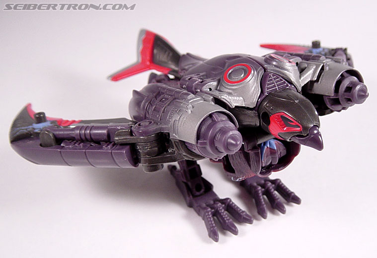 Transformers Armada Airazor (Image #5 of 92)