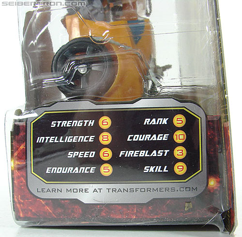 Transformers Hunt For The Decepticons Bumblebee (Image #11 of 85)
