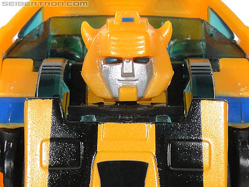 Reveal The Shield Bumblebee gallery