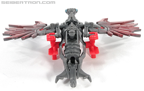 Transformers Dark of the Moon Laserbeak (Image #32 of 87)