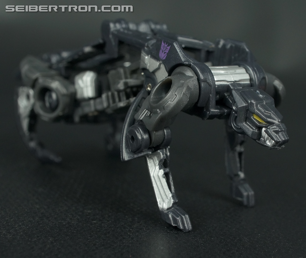 Transformers Fall of Cybertron Ravage (Image #31 of 66)