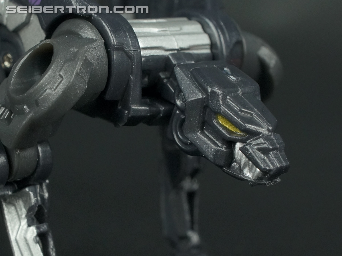 Transformers Fall of Cybertron Ravage (Image #32 of 66)
