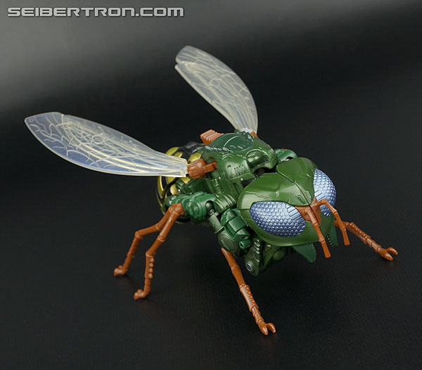 Transformers News: New Galleries: Takara Tomy Generations TG-30 Waspinator and TG-31 Rhinox